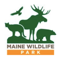 Maine WIldlife park.png