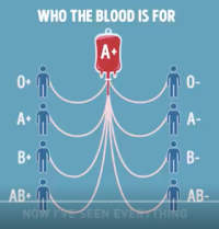Blood donor.png